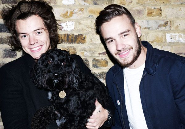 Harry Styles and Liam Payne are keen supporters of cancer charity Trekstock