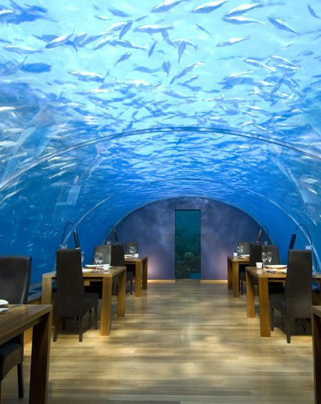 Eat at the Ithaa Undersea Restaurant at the Conrad