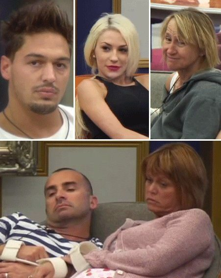 The Celebrity Big Brother Season 2 Winner Is…   TV Guide