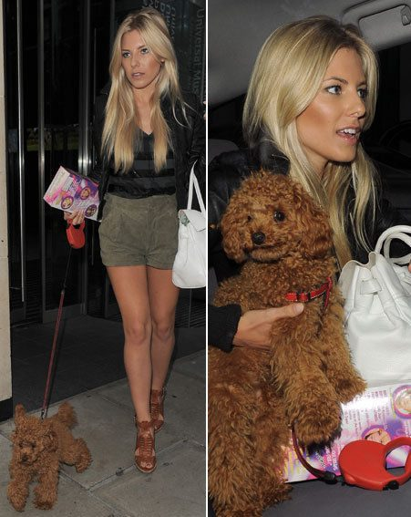 Mollie King of The Saturdays takes her adorable dog to their Ustream show (Pics: wenn.com)
