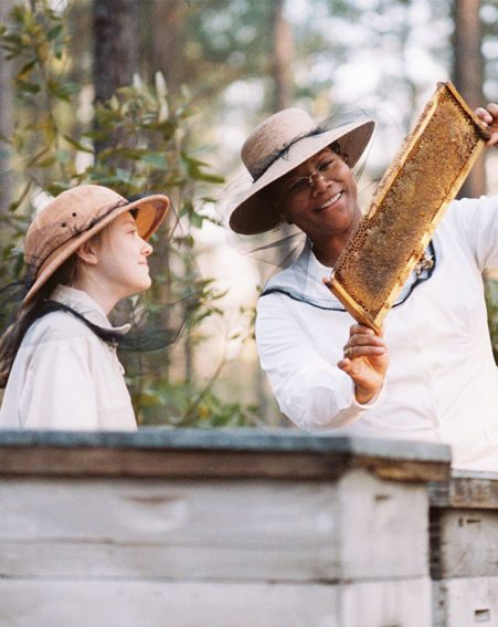 how did lily owens change throughout the book secret life of bees And the 1960s in the secret life of bees analysis,  the litcharts book battle feature is under development and is not yet available  lily owens (partly.